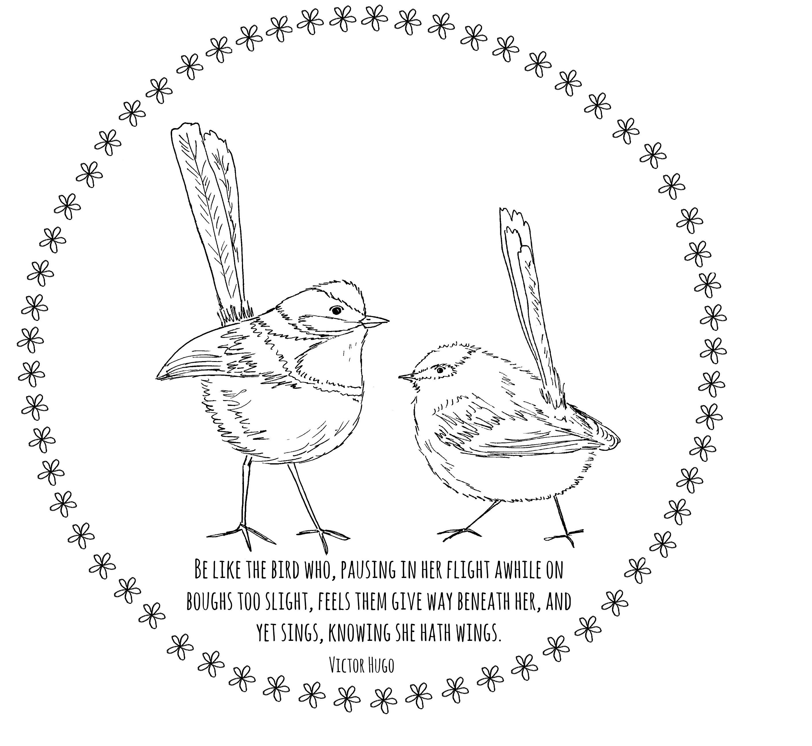 Bird Embroidery Pattern Free Embroidery Pattern Wrens The Lavender Wrens Parlour