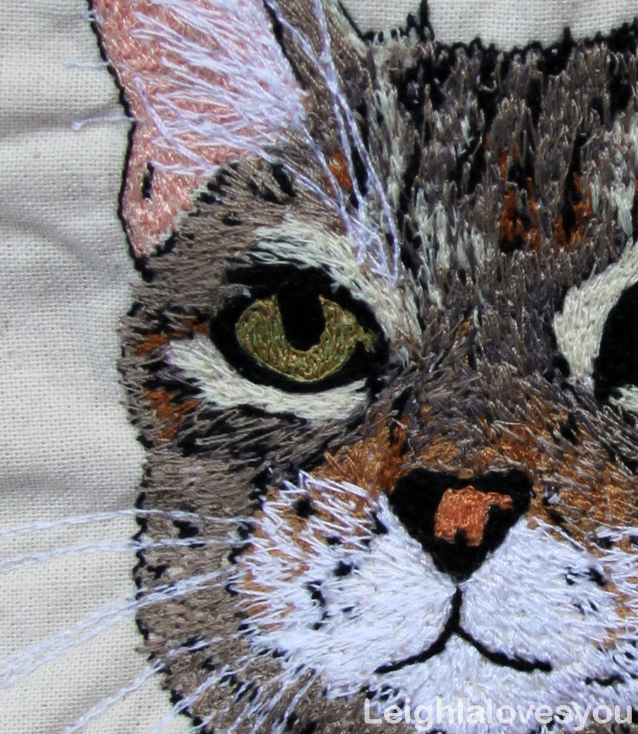 Cat Embroidery Patterns Making Custom Embroidery Patterns A Case Study