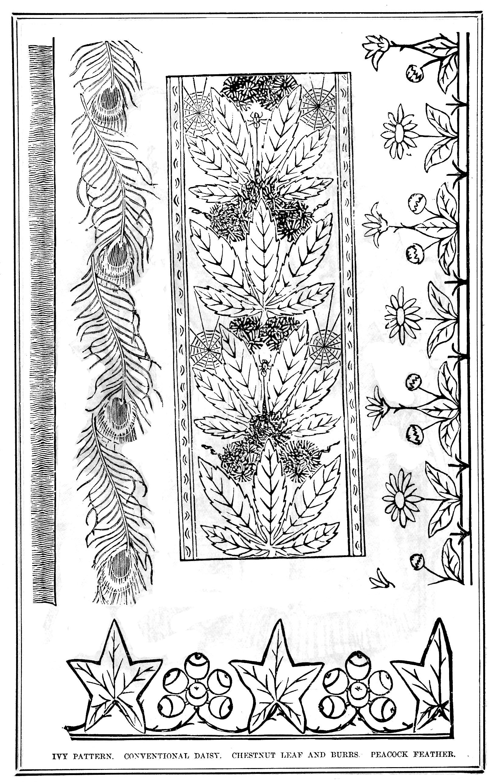 Peacock Embroidery Patterns Victorian Era Embroidery Patterns Vintage Crafts And More