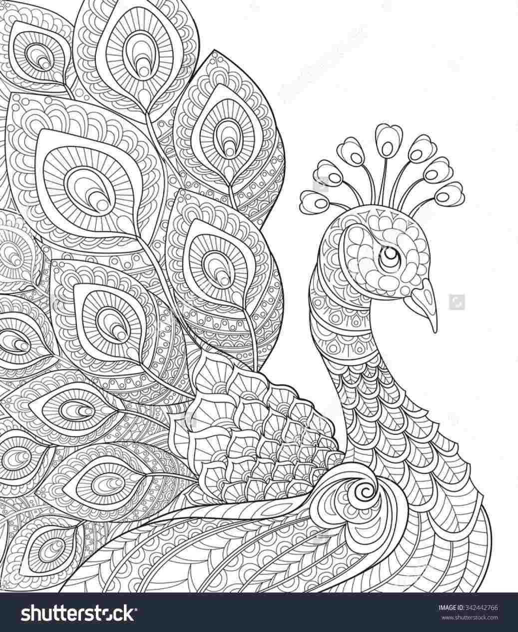 Peacock Embroidery Patterns Wheeler Embroidery Patterns Design Rhpinterestcom Laura Colouring
