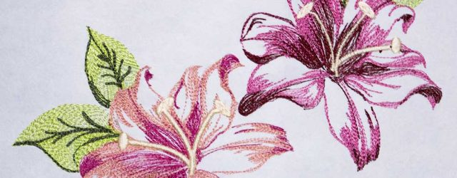 Janome Embroidery Patterns Janome Educator Alba Fekete Created These Two Designs Specifically