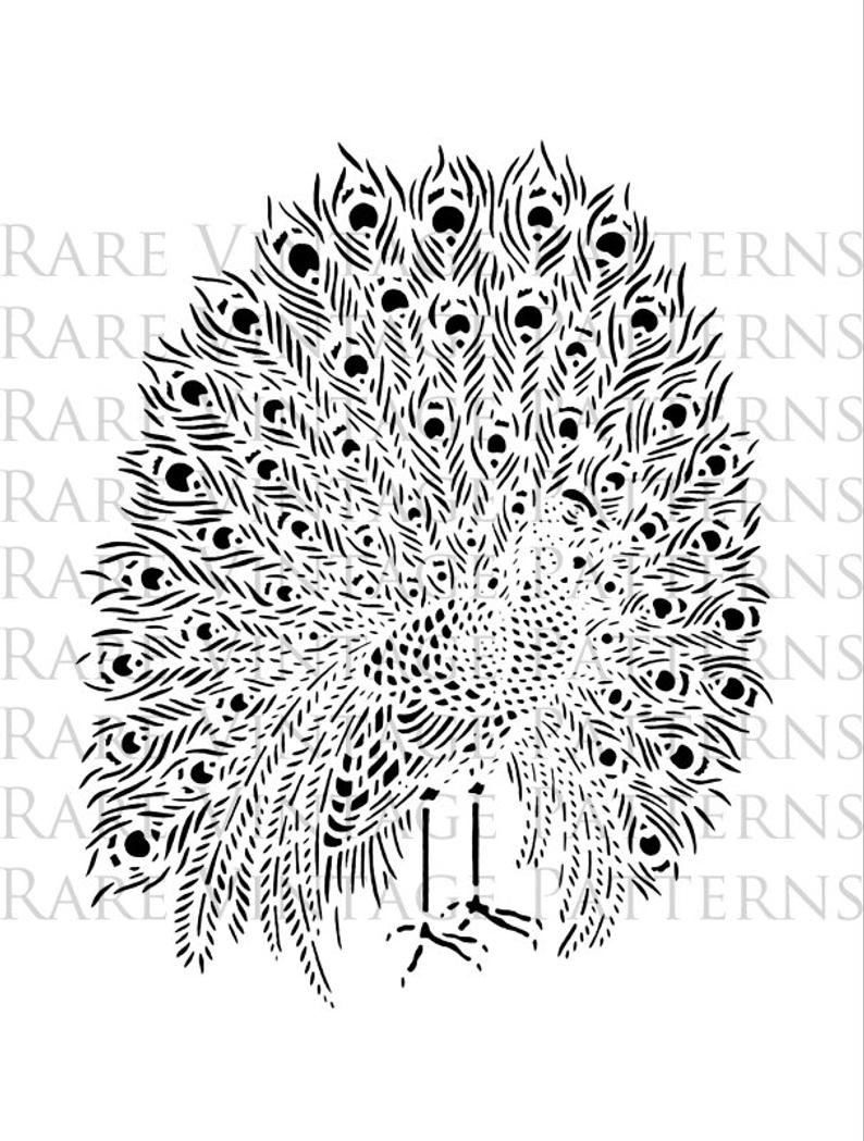 Peacock Embroidery Patterns Large A4 Peacock 1 Embroidery Stencil 2 X Files Jpg Png Transparent Images Clip Art Scrapbooking Printable 300dpi 85x11 Instant Download