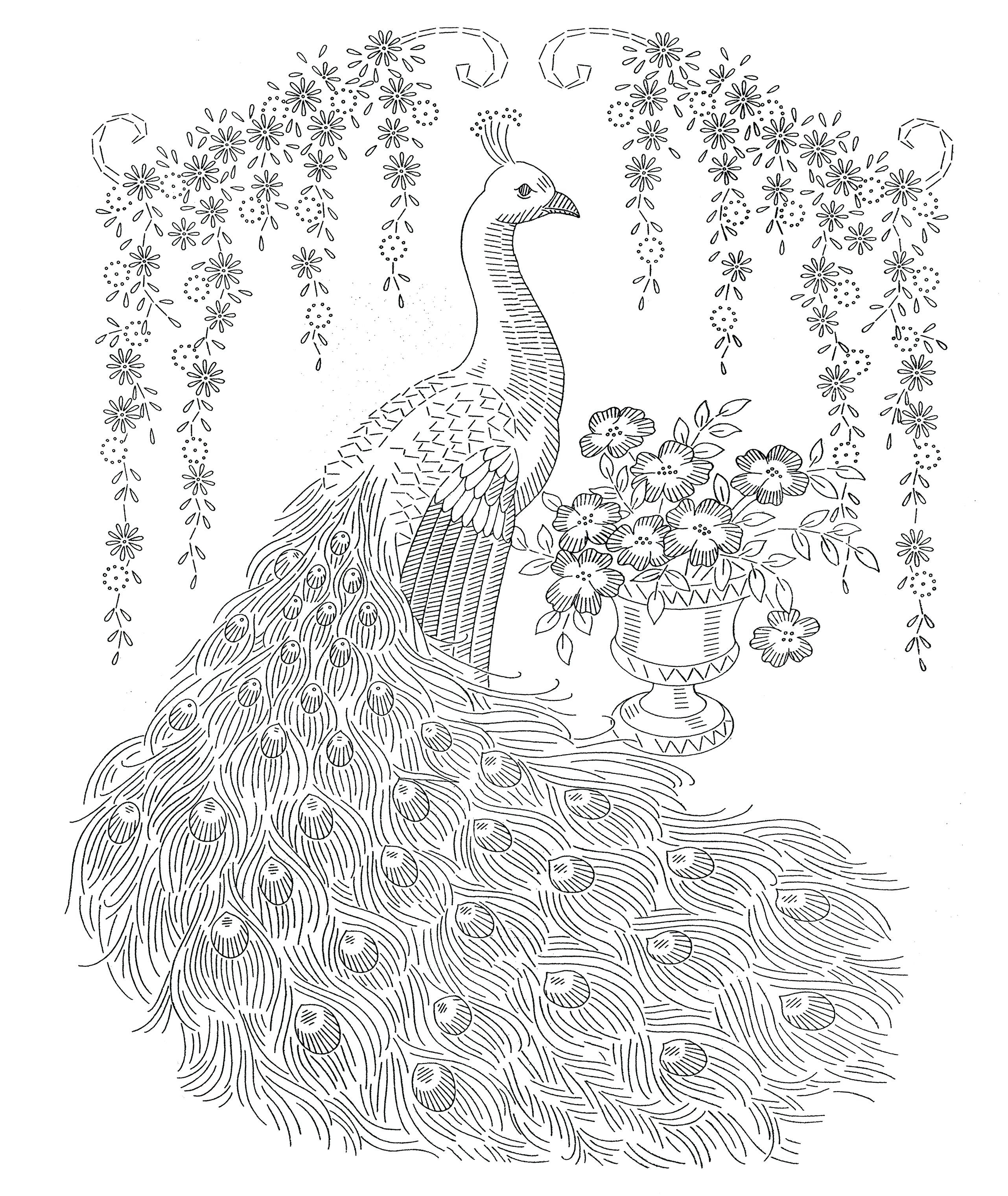 Peacock Embroidery Patterns Peacock Color Pages Fiestaprintco